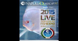 Napoli Aquatica 2015