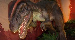 Days of the Dinosaur