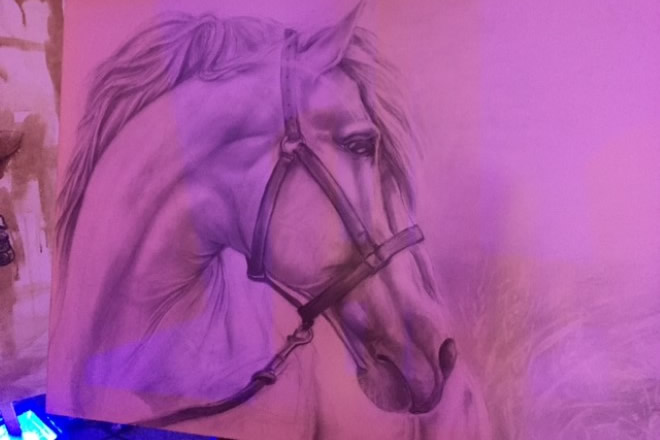 I cavalli di Elisabetta Rogai