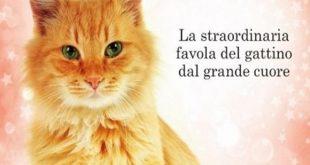 Oliver, il gatto che salvò il Natale, Sheila Norton