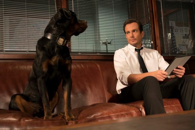 Show Dogs. Foto di Adrian Rogers fornita da Ufficio Stampa