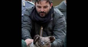 Nella foto il Dott. Luigi De Luca Bossa durante la liberazione di un falco. Foto da Facebook