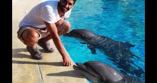 Filippo Magnini con i delfini ad Oltremare e Aquafan. Foto da Ufficio Stampa.