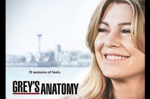 Grey's Anatomy 15. Foto dal Web