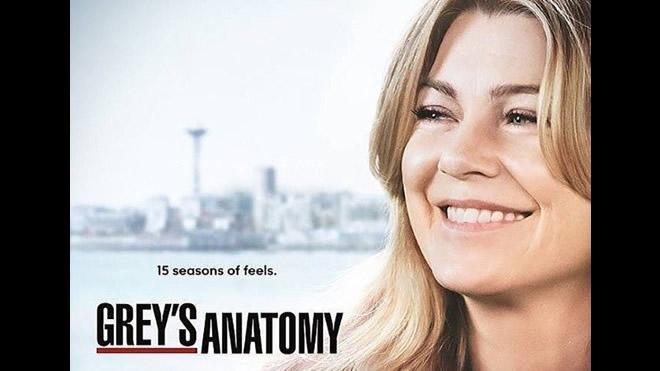 Grey's Anatomy 15. Foto dal Web