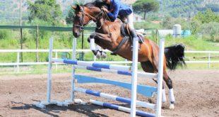 Claudio Belardo a cavallo. Foto fornite dall'atleta