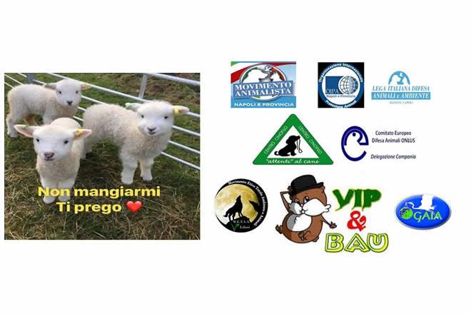 Protesta contro la mattanza degli agnelli