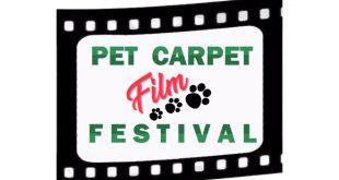Pet Carpet Film Festival