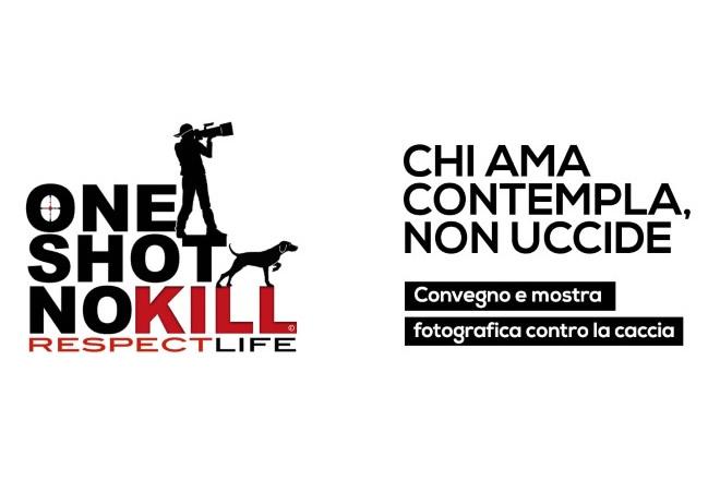 One shot no kill OIPA