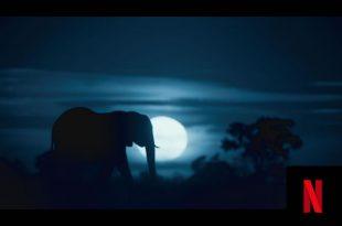 Notte sul pianeta terra su Netflix