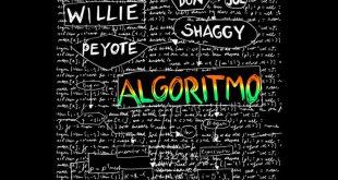 Willie Peyote - Algoritmo