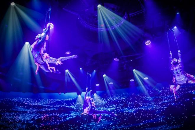 Il Cirque du Soleil. Foto dal Web