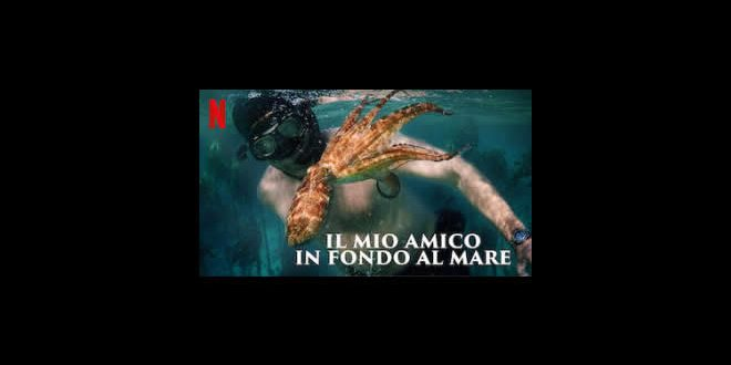 Il mio amico in fondo al mare – My Octopus Teacher su Netflix