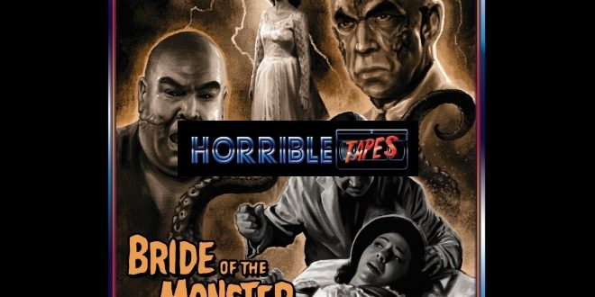 Horrible Tapes in home video, alla scoperta di lungometraggi horror inediti