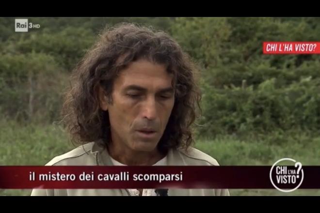 Tommaso Corona sui cavalli scomparsi a Chi l'ha visto