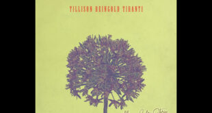 Jonas Reingold - Allium di Andy Tillison